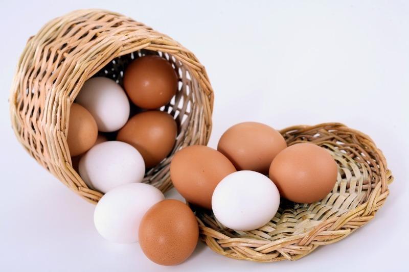 Чем отличаются белые яйца от коричневых: об этом знают только самые продвинутые хозяйки